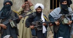 طالبان کا چیک پوسٹ پر حملہ،13 اہلکارجاں بحق ، افراتفری مچ گئی