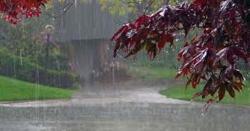 ملک بھر میں مزید بارش کا امکان