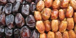ضلع خیبر پور میں کھجور کی سالانہ 7 لاکھ ٹن پیداوار، صرف40 فیصد برآمد کی جاتی ہے