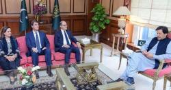 وزیراعظم عمران خان کی آئی ایم ایف وفد سے  ملاقات