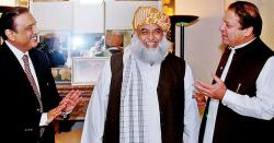 فضل الرحمن نےنواز شریف اور آصف زرداری کی گرفتاری کو ناجائز عمل قرار دیدیا