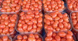 ٹماٹر مہنگے بیچنے سے روکنے پر آڑھتی نے مارکیٹ عہدیدار پر گولیاں چلادیں