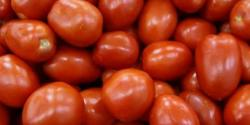 ایران سے درآمد ،سرکاری نرخ نامے میں کمی کے باوجوداوپن مارکیٹ میں ٹماٹرکی قیمت نیچے نہ آ سکی،عوام کی چیخیں نکل گئیں