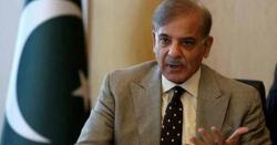 اب پاکستان واپس نہیں آئیں گے؟ شہباز شریف نے خود اعلان کردیا
