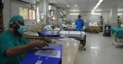 صادق آباد پہنچنے والے جوڑے نے پنجاب حکومت کا پول کھول دیا