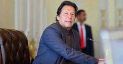 عمران خان ایک دیانتدار انسان، پرانی باتوں کو بھول جائیں وہ قوم کو مایوس نہیں کرینگے، جاوید میانداد