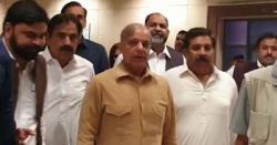 لاہور ہائیکورٹ نے نیب کو شہباز شریف  کو گرفتار کرنے سے روک دیا
