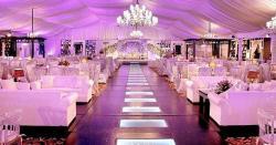 شادی ہالوں کو کھولنے کےلئے قرارداد پنجاب اسمبلی میں جمع