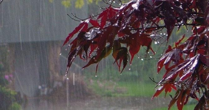 مون سون بارشیں، آج کن کن شہروں میں بادل برسیں گے؟محکمہ موسمیات کی اہم پیشنگوئی