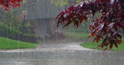 ملک میںاس سال معمول سے زیادہ بارشیں مستقبل کے حوالے سے کیا پیشگوئی کر رہی ہیں ؟ محکمہ موسمیات نے بتا دیا