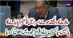 پاکستان اتنی کمزور ریاست نہیںکہ اسرائیل کو تسلیم کرلے، منیر اکرم