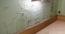 کیا آپ کے گھر کی دیواریں بھی سیلن سے خراب ہوگئی ہیں؟ تو اس سے نجات کیسے ممکن ہے؟ جان لیں!