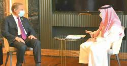 شاہ محمود قریشی کی سعودی وزیر خارجہ سے ملاقات، کشمیر کا مسئلہ اٹھادیا، آگے سے کیا جواب ملا؟