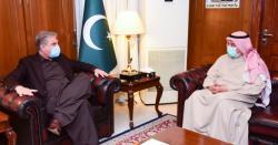پاکستان میں کویت کے سفیر نصر المطہری کی وزیر خارجہ مخدوم شاہ محمود قریشی سے ملاقات