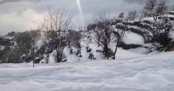 محکمہ موسمیات کی دھند ،بارش اور پہاڑوں پر برفباری کی پیش گوئی