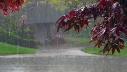 محکمہ موسمیات نے بارشوں کی پیش گوئی کردی
