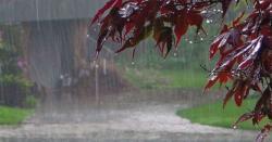 ملک کے کن کن علاقوں میں بارش ہوں گی ؟محکمہ موسمیات نے پیش گوئی کردی