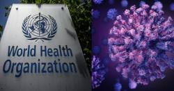 کورونا وائرس کی نئی بھارتی قسم پر ویکسین بھی اثر نہیں کر رہی، عالمی ادارہ صحت